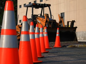 cones - Photo Attribution: Schizoform, used under a Creative Commons Attribution license